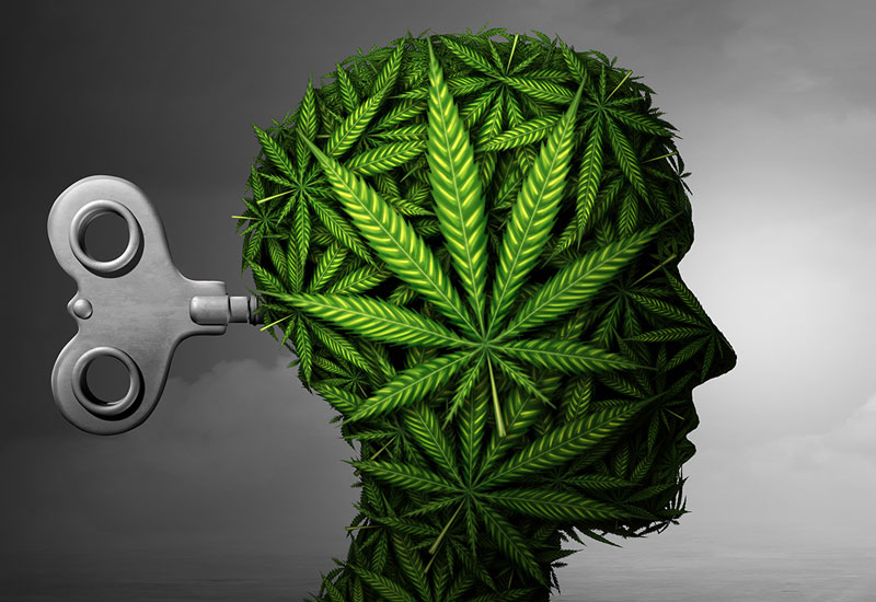 Menninger Clinic | Blogger Examines Relationship Between Psychosis and Regular Marijuana Use